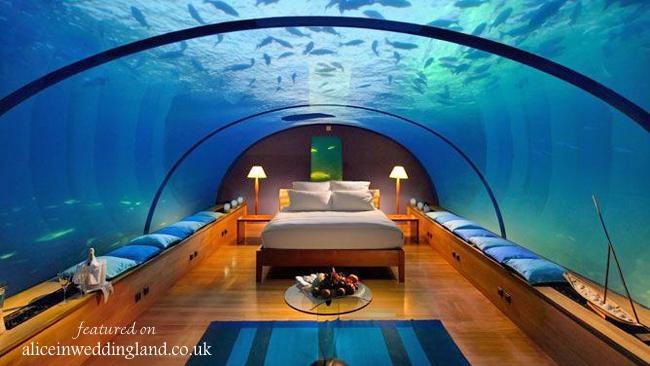 Under the sea: Spectacular underwater honeymoon suite