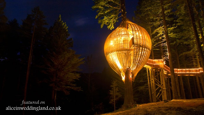 Spectacular Venue:  The Redwoods Treehouse