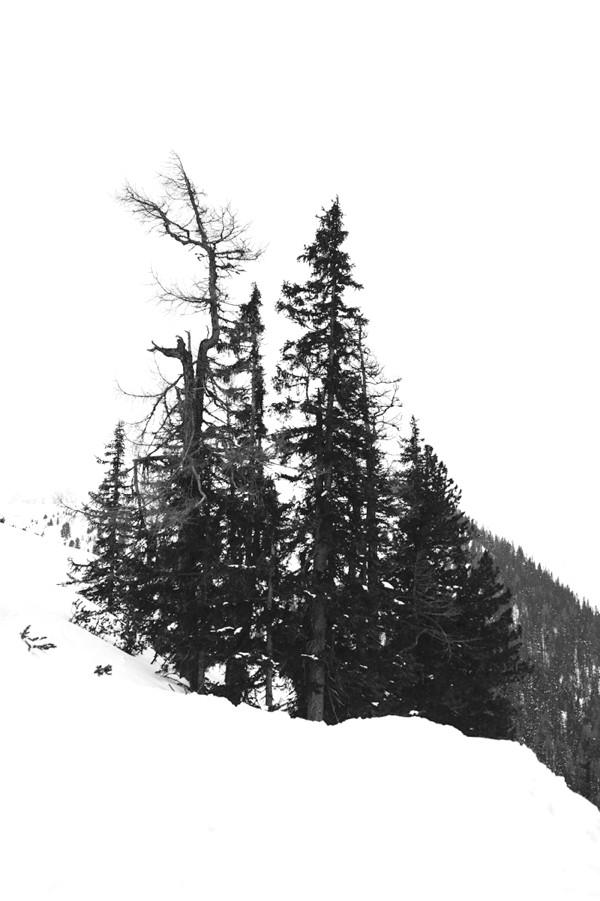 AliceWeddingBlog-CM-WinterWeddingAustria-030