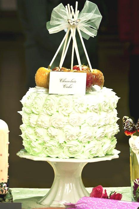 AliceWeddingBlog-ballerinas-and-butterflies-wedding-photo-shoot-0001